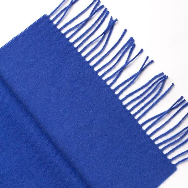 Mėlynos spalvos šalikas